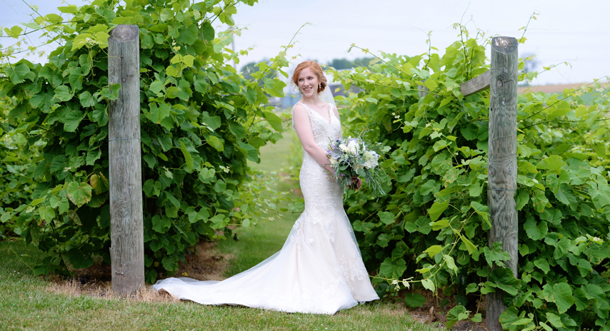 Vineyard-at-Hershey-Weddings-2