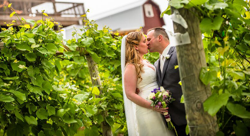 Vineyard-at-Hershey-Weddings-3