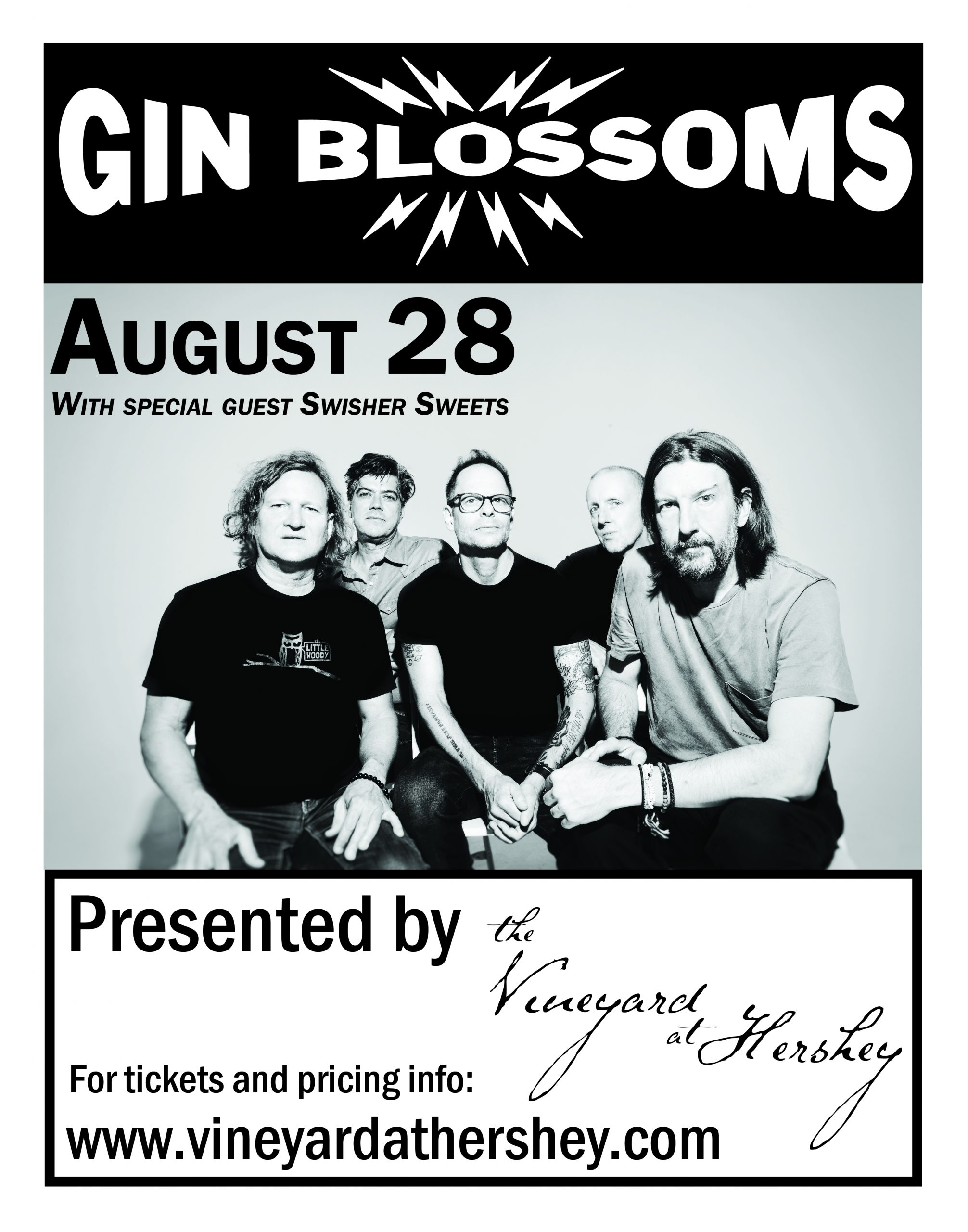 Gin Blossoms Acoustic Performance